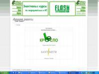 Элективные курсы / Flash технологии